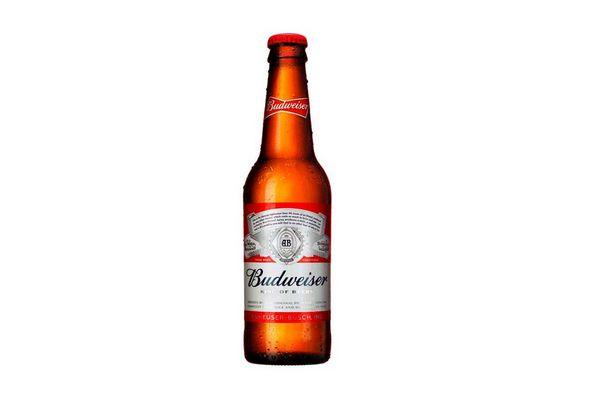 Cerveza BUDWEISER Botella 330ml en Tienda Inglesa